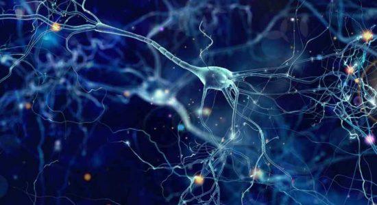 Nueva terapia para ALS entra en ensayos clínicos