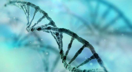 El inhibidor oral de la calicreína en plasma reduce significativamente los ataques de angioedema hereditario
