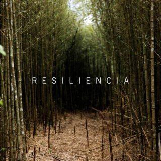 Señales que demuestran que eres una persona resiliente