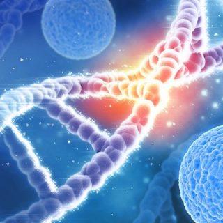 AVROBIO no recibe ninguna objeción a la solicitud de ensayo clínico de Health Canada para la terapia génica AVR-RD-02 para la enfermedad de Gaucher