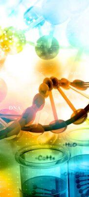 Por qué es importante conocer historial de salud familiar
