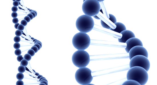 Un caso inusual de síndrome de Bardet-Biedl plantea preguntas sobre el riesgo de cáncer