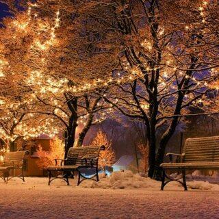 enfermedad de Batten y Navidad